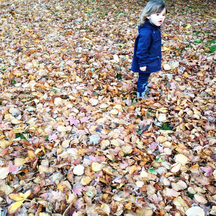 FUNKINS-Oh Autumn foto 8