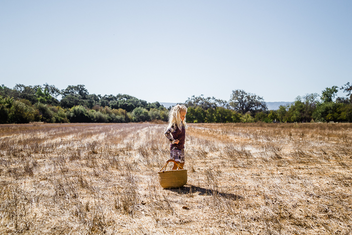 Babiekins Magazine || Kelly Sweda Photography, Walnut Picking