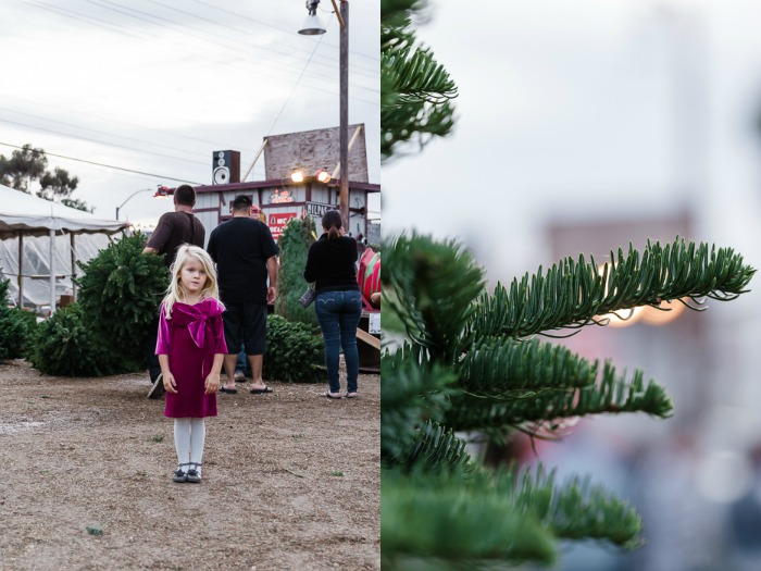 Babiekins Magazine || Kelly Sweda Photography, Christmas Tree Lot in Mary Helen Clothing