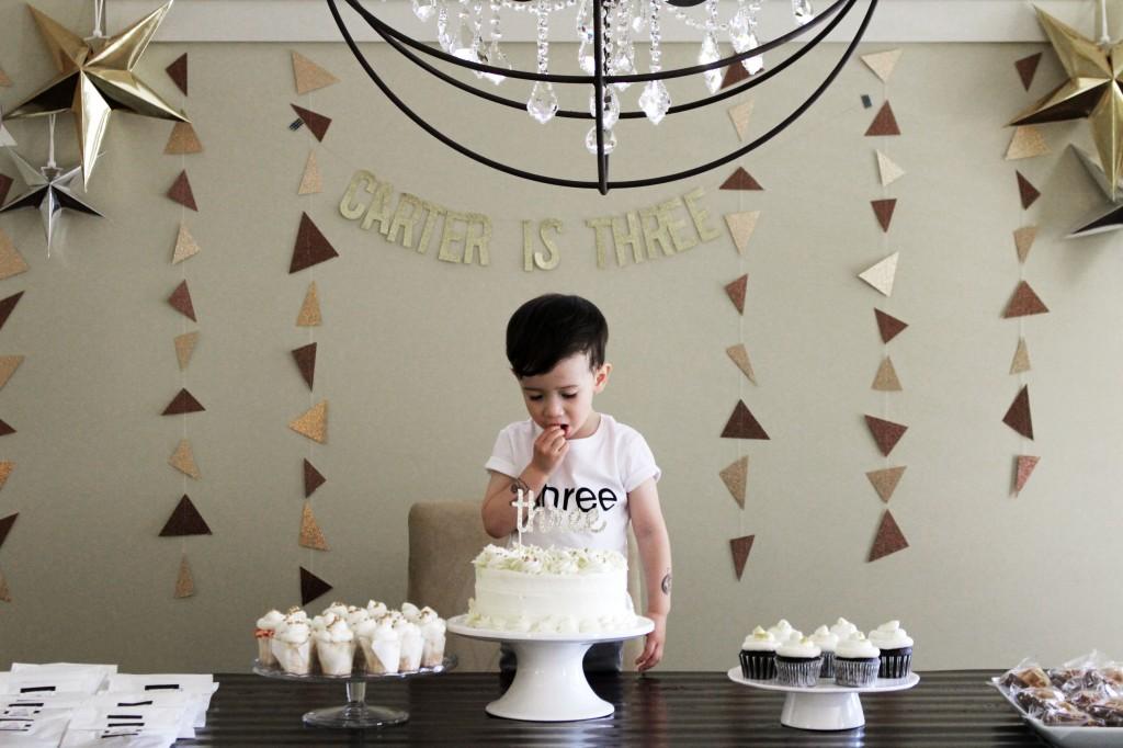 Babiekins Magazine | Partykins // Carter's 3rd Birthday