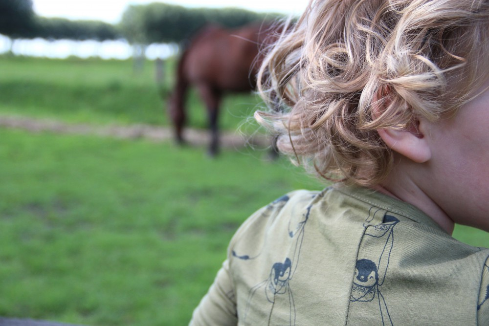 BABIEKINS MAGAZINE | Last Summer Days