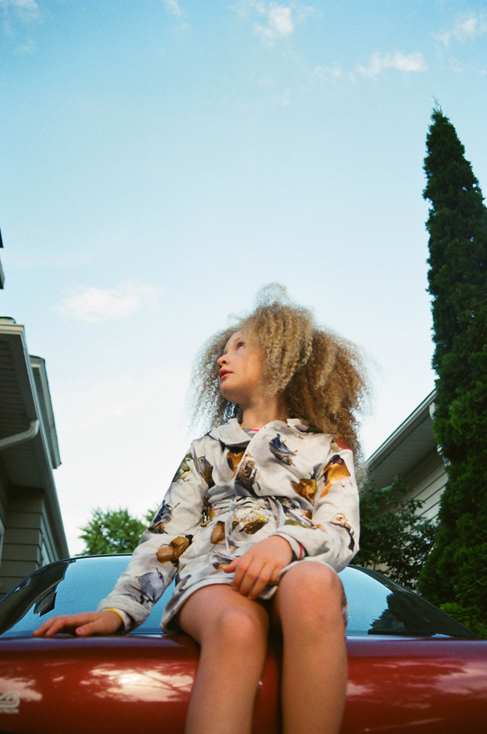 BABIEKINS MAGAZINE | Suburbia