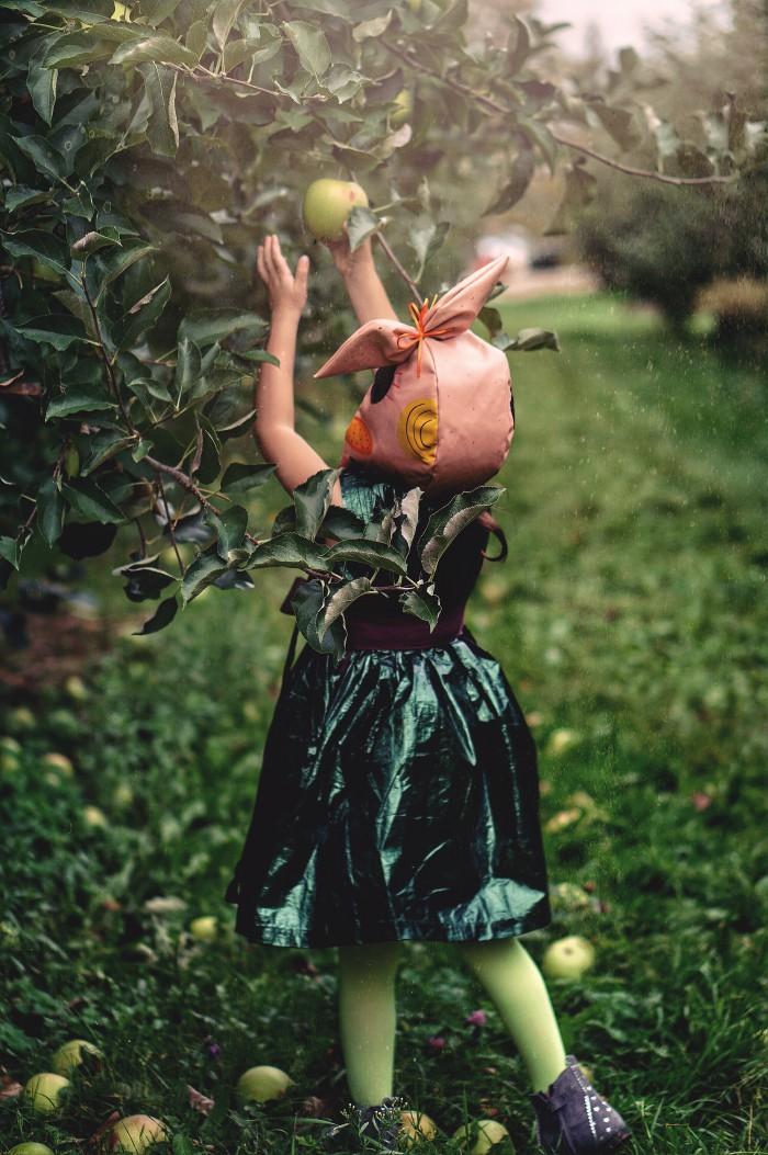 Fashionkins // The Orchard