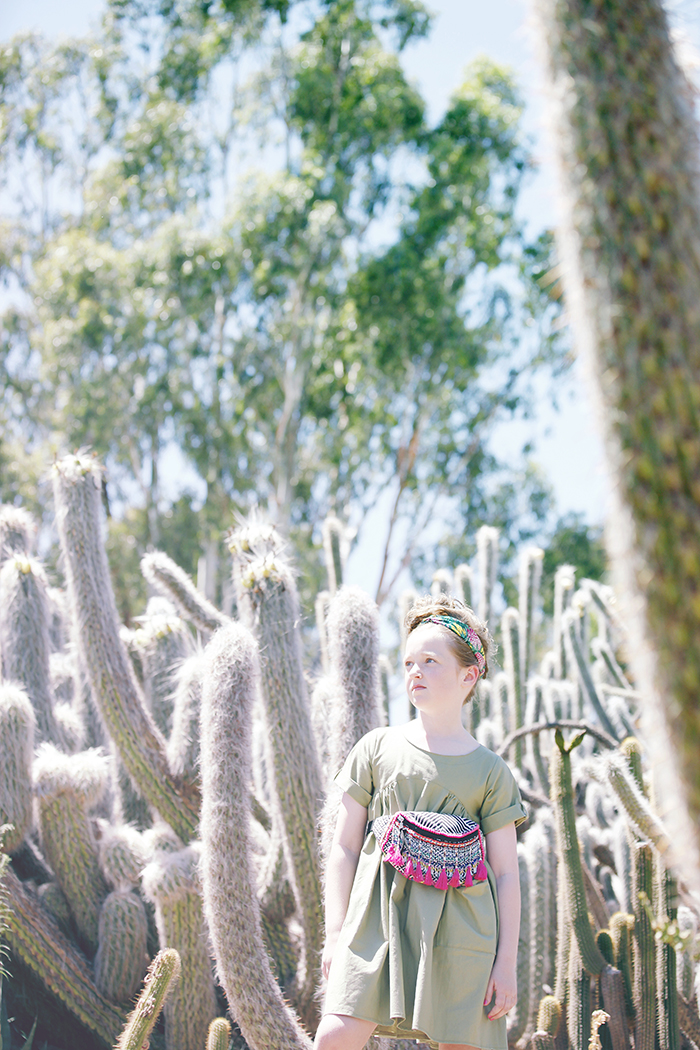 Cactus_07325